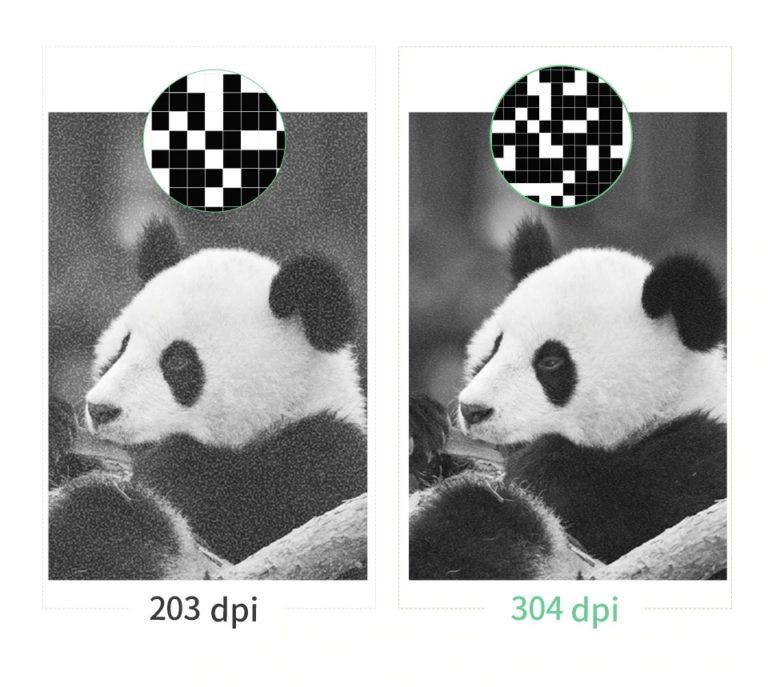Peripage vs Peripage HD